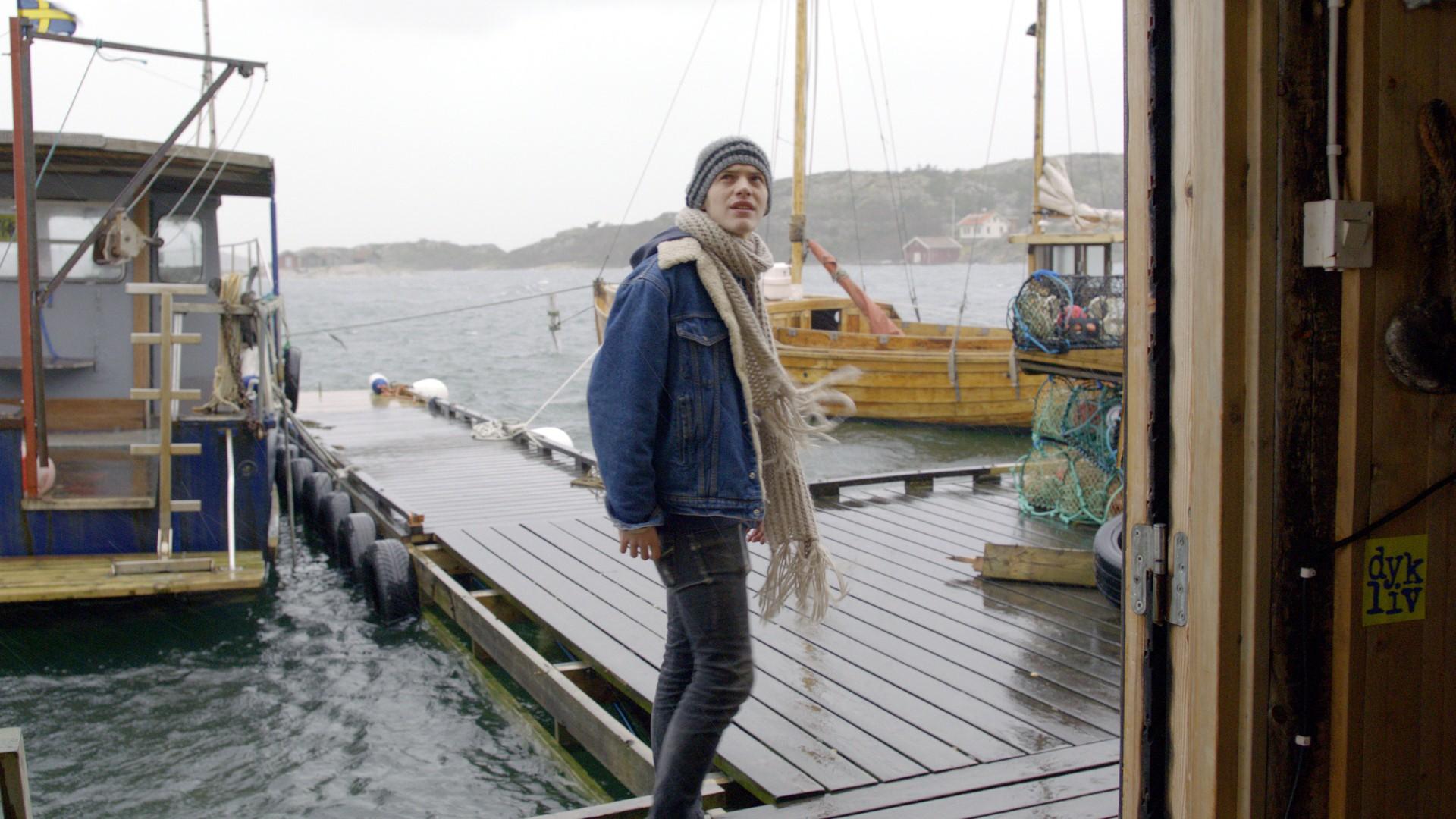 Umorstva u Fjällbacki 3: Vitezovi mora