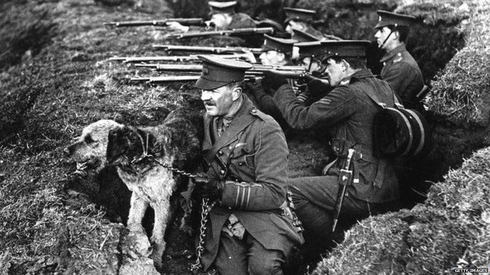 Životinje u prvom svjetskom ratu