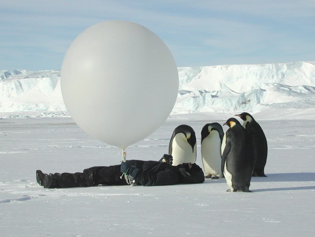 Zarobljeni u ledu Antarktike