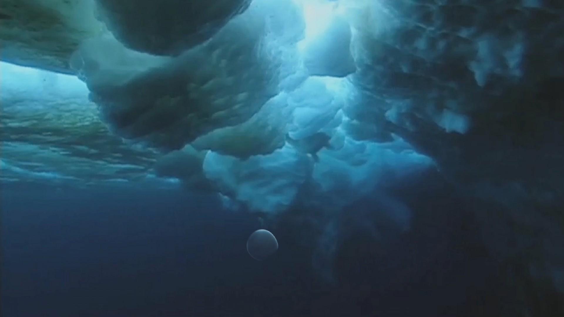 Kraljevstvo oceana