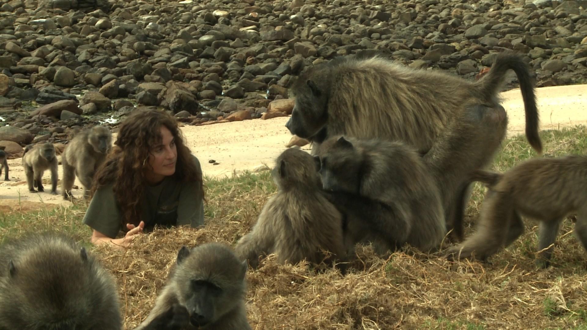 Razgovarati sa životinjama
