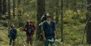 Strah u šumi
